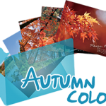 《Autumn Color》 Ranger's Photo Gallery