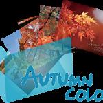 《Autumn Color》 Ranger's Photo Gallery
