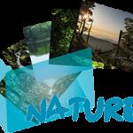 《Nature Photo》 Ranger's Photo Gallery