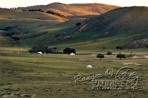 Mongol00019