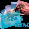 《Sea&Beach》 Ranger's Photo Gallery