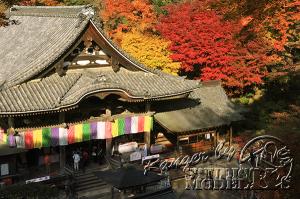 autumn-color00038