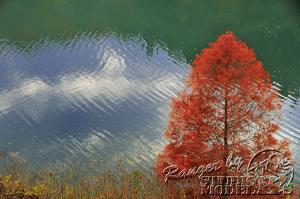 autumn-color00040