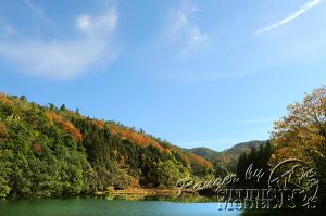 autumn-color00051