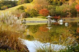 autumn-color00064