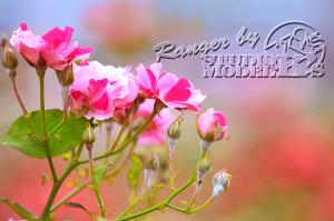 flower45