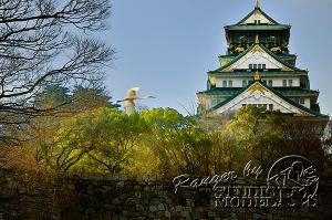 osaka-castle00058