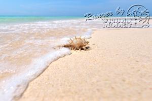 sea&beach00079